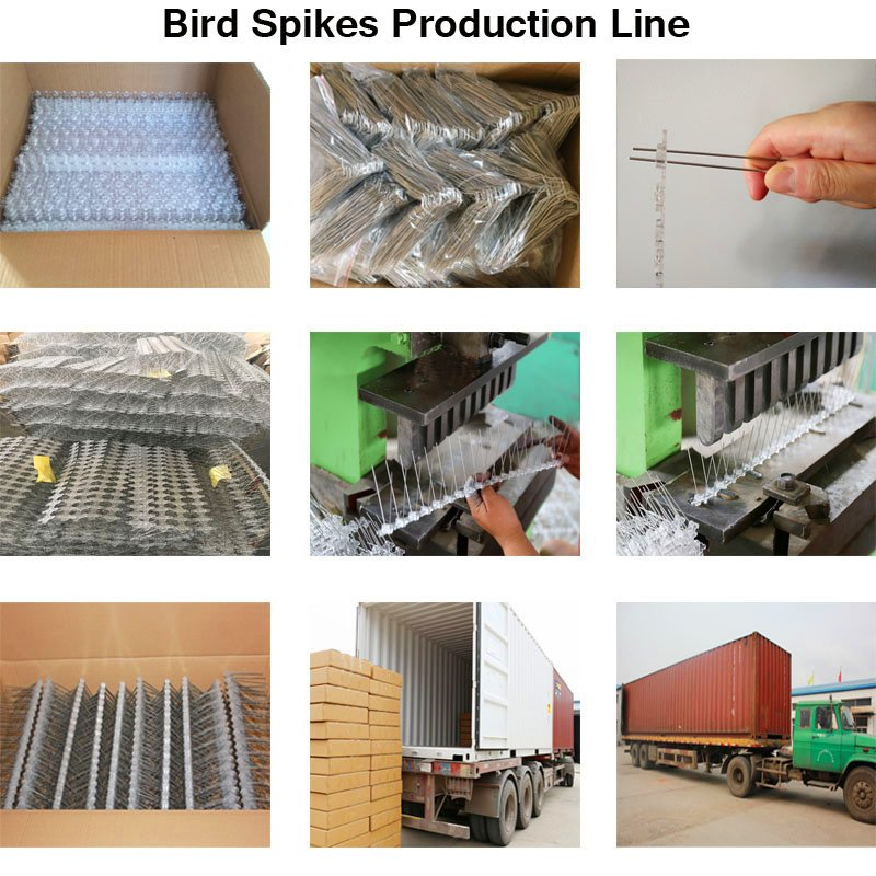 SHPC-27 Best Quality Plastic And Stainless Steel Pigeon