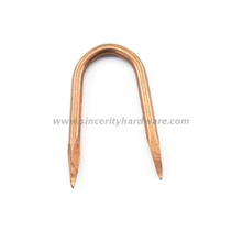 Rolled Point Copper Coated Staple